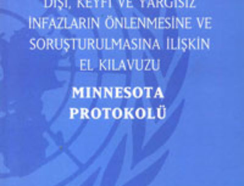 Minnesota Protokolü